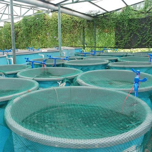 aquaculture_7B47FD8474C2E